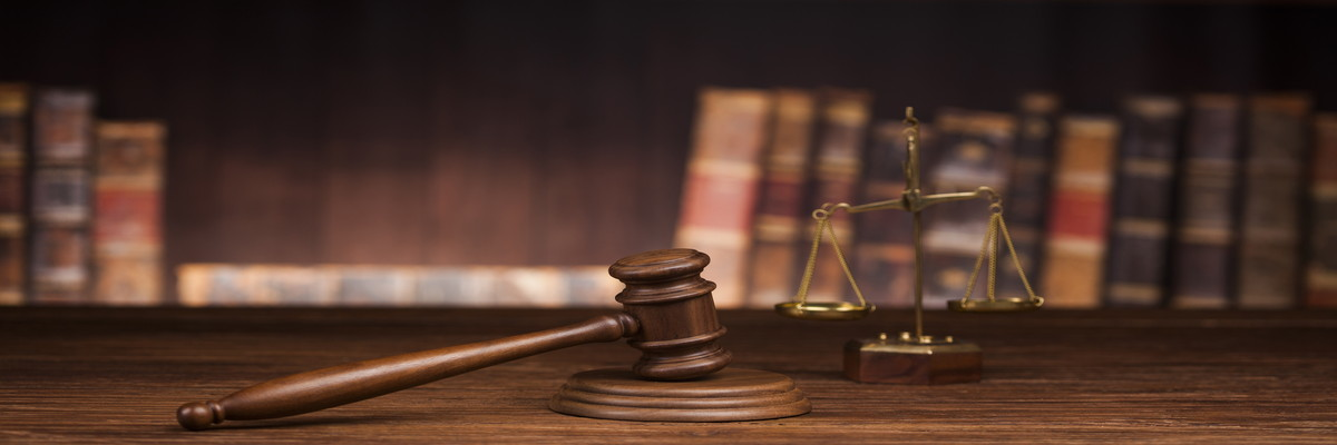 法廷弁護技術研修